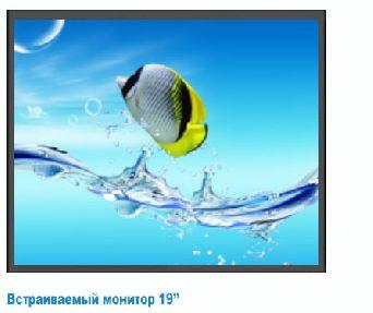 Монитор 19 дюймов
